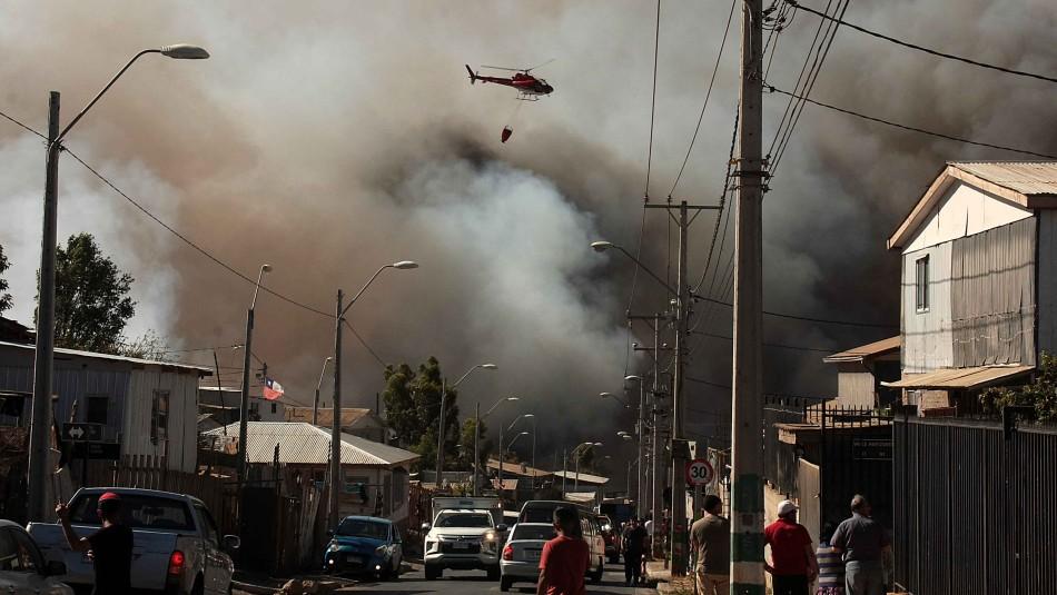 Ministro de Agricultura confirma a un sospechoso por incendio forestal en Valparaíso