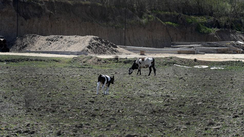 Gobierno no descarta racionamiento de agua por megasequía en Chile