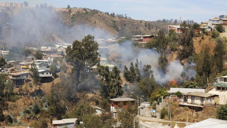 Detienen a presunto responsable de causar rebrote de incendio en Cerro San Roque en Valparaíso