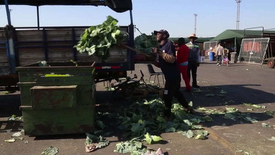 Lo Valledor ayuda a Petorca por la sequía: Envían residuos vegetales para alimentar a animales