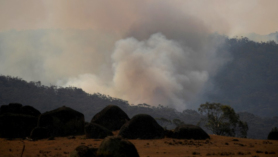 La lluvia da un respiro en los enormes incendios forestales que azotan a Australia