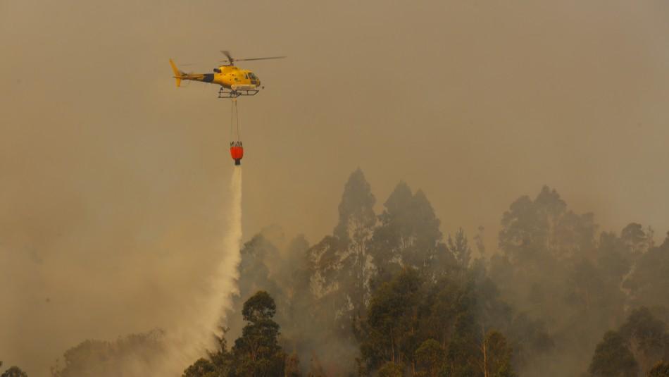 Gobierno se querella contra quienes resulten responsables por incendios forestales en el Biobío