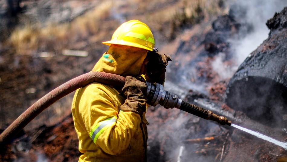 Temporada de incendios forestales: Conaf habla de estrés hídrico y más de 57 mil hectáreas afectadas