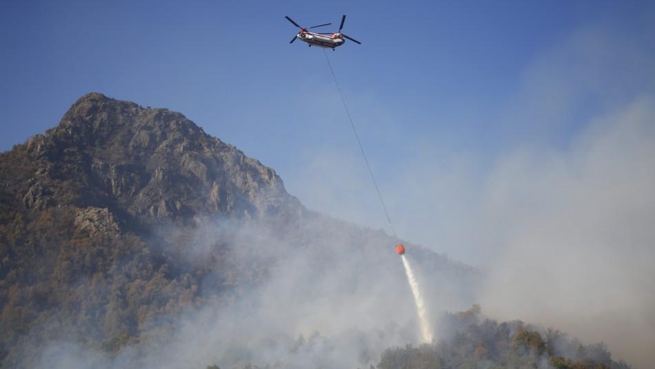 Incendios forestales en el Maule: Autoridades piden intervención de avión Supertanker