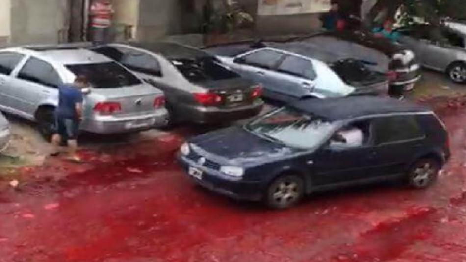 Miles de litros de sangre animal fueron derramados en calles argentinas tras explosión de depósito