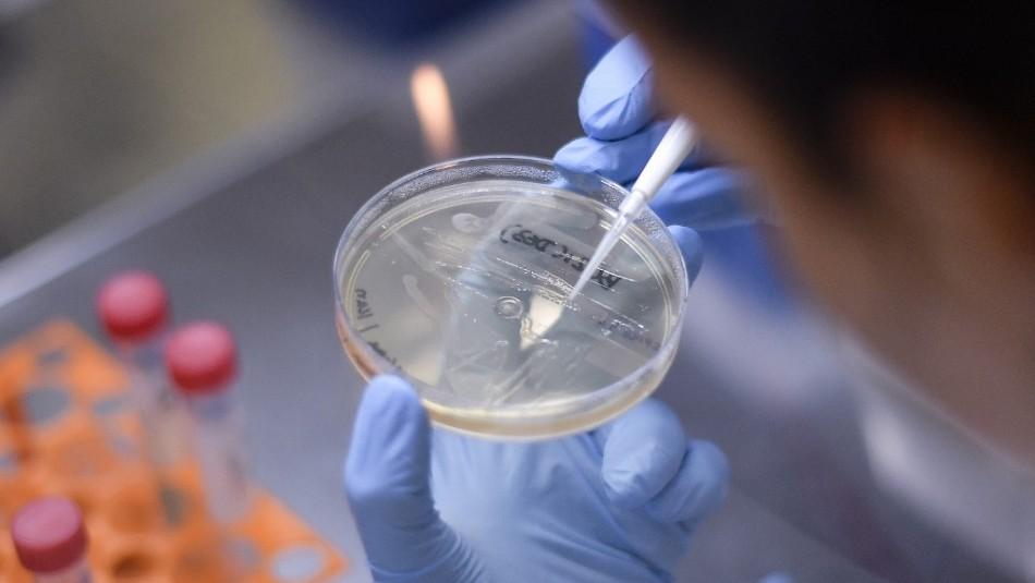 Especialista aclara que pueden producirse contagios simultáneos de coronavirus e influenza