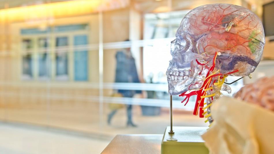 Meningoencefalitis: La rara complicación que desarrollan algunos pacientes con coronavirus
