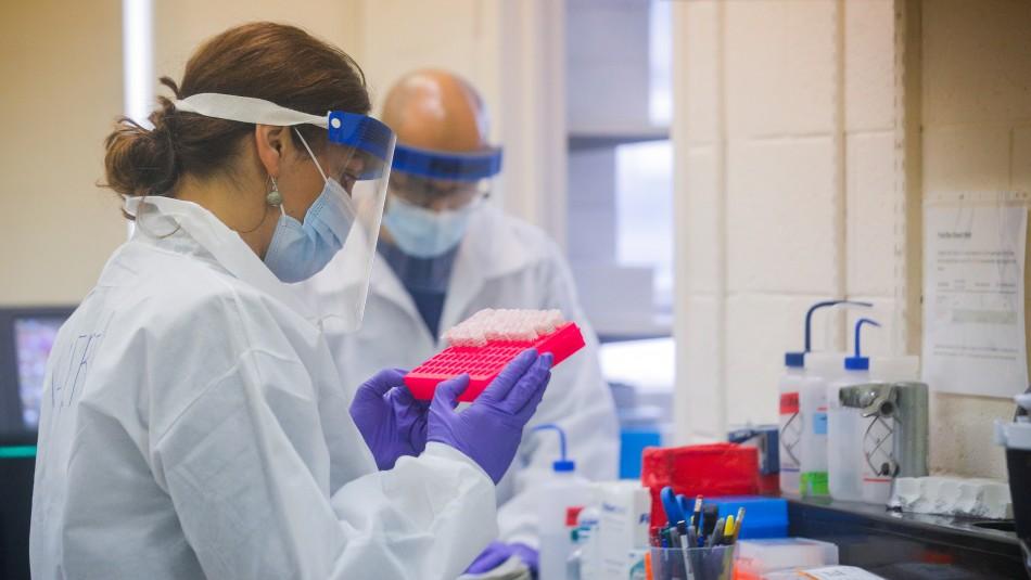 Coronavirus: Ingenieros UC desarrollan kit olfativo para detectar casos asintomáticos