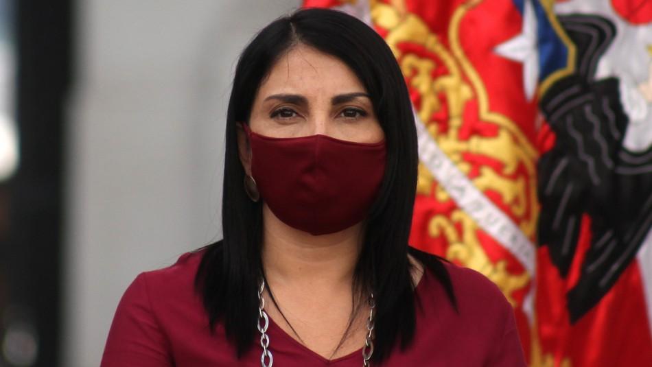 Gobierno chileno y cifras erróneas dadas por Argentina sobre el coronavirus: