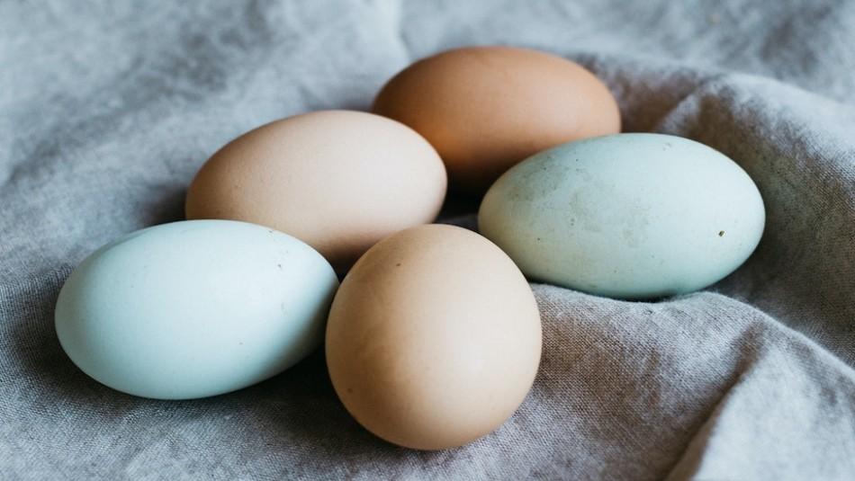 Estudio despeja la duda sobre el supuesto nexo entre entre el consumo de huevos y problemas del corazón