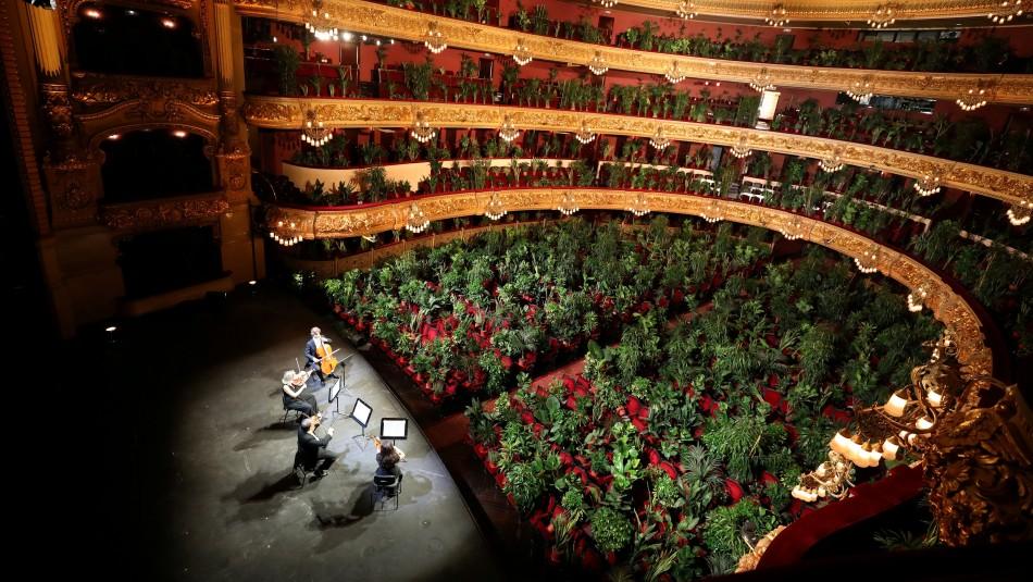 Teatro de España reabre con concierto para más de 2.200 plantas