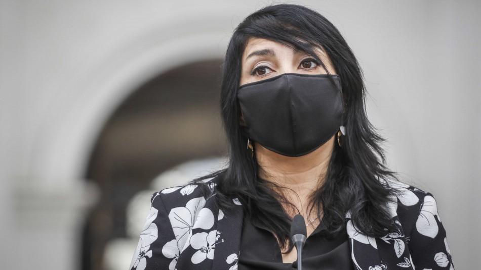 Vocera de Gobierno no descarta nuevos subsidios ante crisis económica por coronavirus