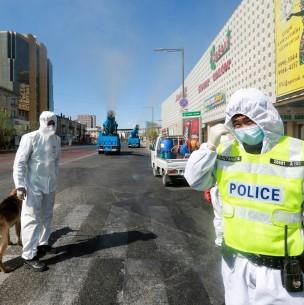 Brote de peste negra: Mongolia cierra sus fronteras con Rusia y mantiene aislada a su población