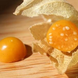 Golden berry o