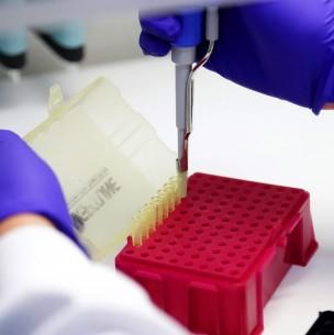 Coronavirus en Chile: Conoce la evolución de los casos activos en las últimas dos semanas