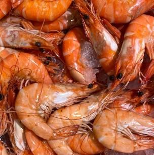 Detectan coronavirus en paquetes de camarones ecuatorianos: China suspende importaciones