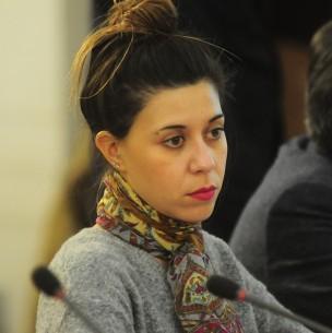 Diputada Cicardini niega presunta falta a Ley de Lobby tras polémica conversación de WhatsApp