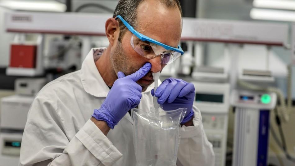 Test detectaría coronavirus en 30 segundos gracias a análisis de olores a través de celulares