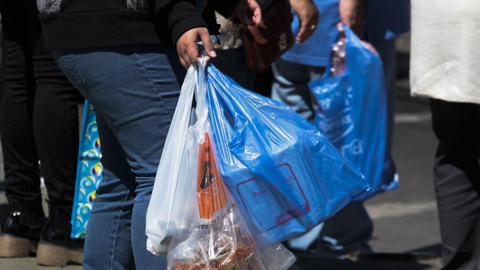 Fin de las bolsas plásticas en el comercio: ¿Cuándo comienza la normativa?