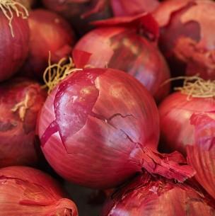 Alerta por brote de Salmonella relacionado a la cebolla morada en Estados Unidos