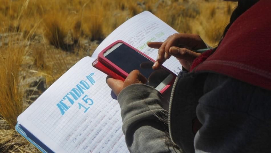 Bolivia finaliza el año escolar por carencias en el acceso a la educación virtual