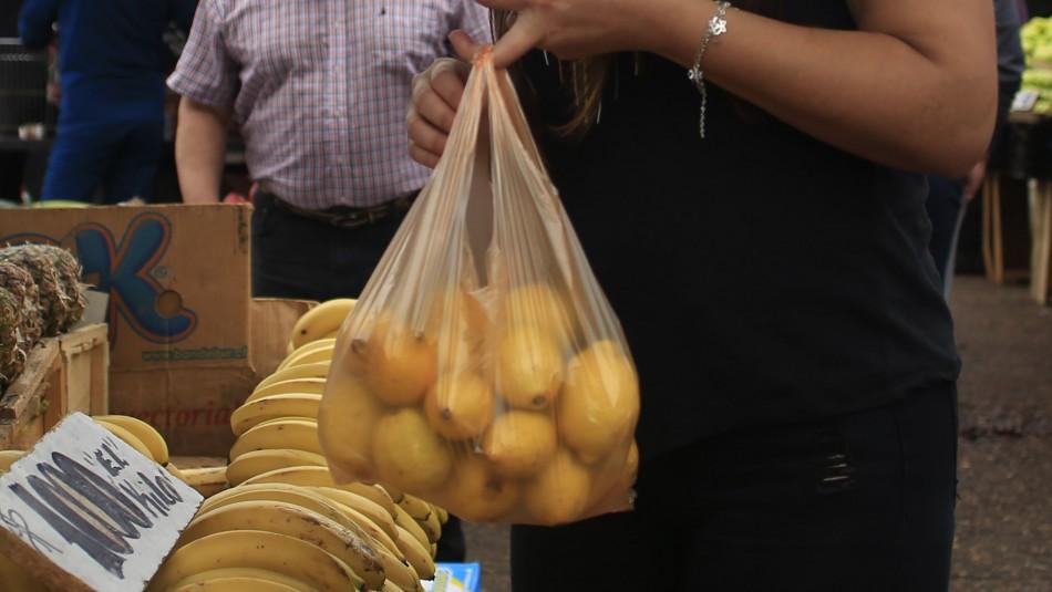 Comienza prohibición de entregar bolsas plásticas en almacenes de barrios y ferias libres