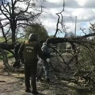Motociclista muere tras chocar con barricada en La Araucanía