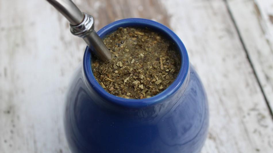 Estimula el sistema inmunológico: Conoce los beneficios que aporta la yerba mate al organismo