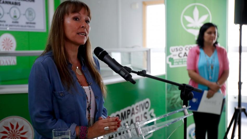 Hija de Ana Gazmuri fue detenida por plantas de marihuana.