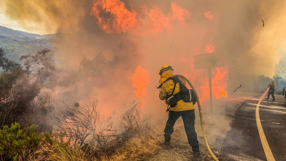 Pareja celebra con fuegos artificiales fiesta por su bebé y provoca incendio forestal