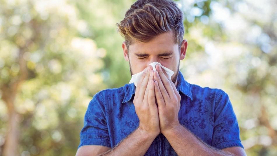 Congestión nasal y picor en la garganta: Conoce los síntomas de la alergia primaveral