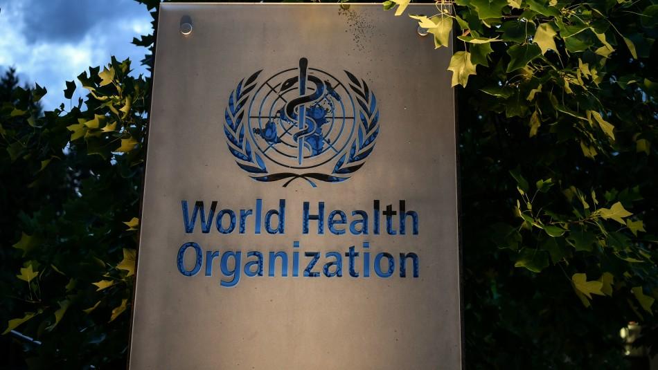 Organización Mundial de la Salud aprueba investigar remedios naturales contra el coronavirus