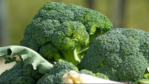 ¿Por qué el brócoli es el mejor aliado para los diabéticos?