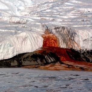 Revelan la razón detrás de las Cataratas de Sangre en la Antártida luego de 100 años de estudio