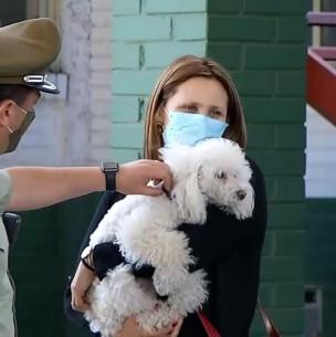 Final feliz: Recuperan perro robado en violento portonazo en La Florida