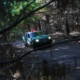 Encuentran sin vida a niño 12 años: Había desaparecido mientras se bañaba en una laguna