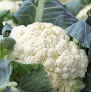 Súperalimentos: Conoce a las crucíferas, las verduras anticancerígenas