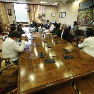 Retiro 10% del Gobierno: Comisión reanuda discusión y votación del proyecto