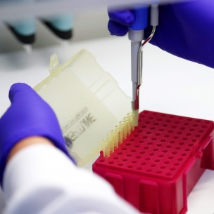 Las 20 comunas con más casos activos de coronavirus: La mayoría es de la región del Biobío