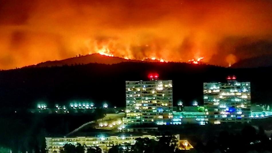 Declaran Alerta Roja en Quilpué por incendio forestal cercano a sectores habitados
