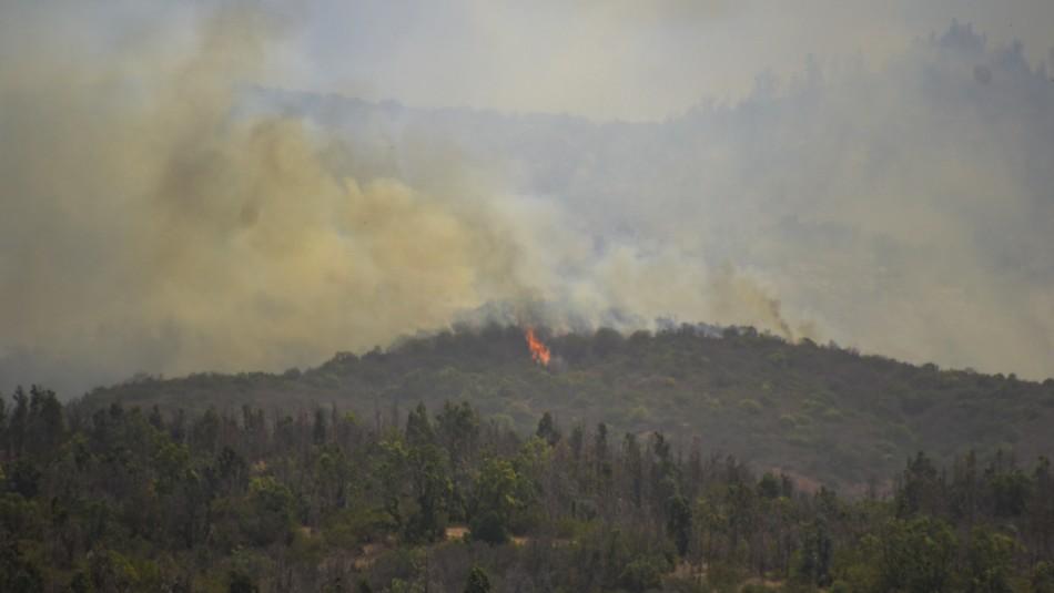 Se declara alerta roja por incendio forestal en la comuna de Valparaíso