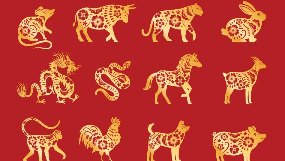 Horóscopo chino: Revisa qué animal te corresponde de acuerdo a tu año