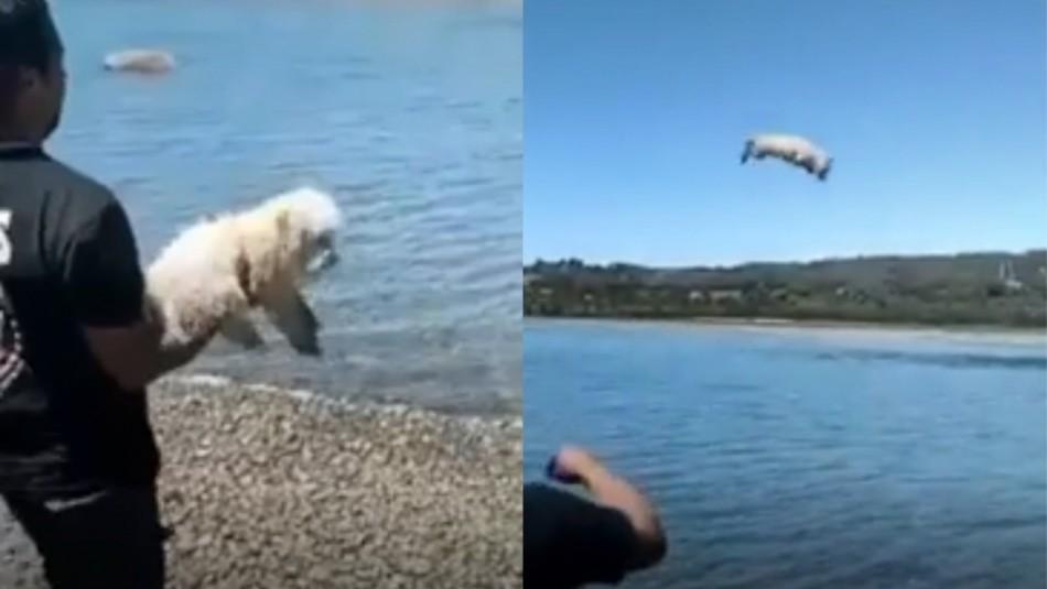 Hombre que lanza a perro al mar fue identificado.