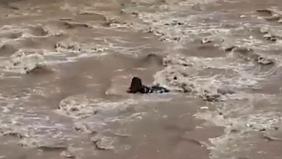 Asaltante se lanza al río Mapocho para evitar ser detenido por Carabineros