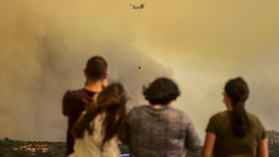 Experta de Conaf e incendios forestales en Quilpué: