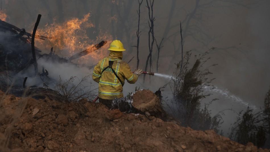 Realizan evacuación en comuna de Nacimiento por incendio forestal que amenaza casas del sector