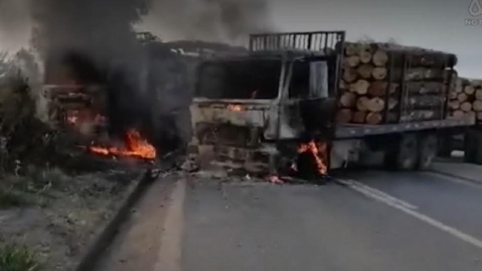 Violencia en Provincia de Arauco: Un conductor herido y once camiones quemados