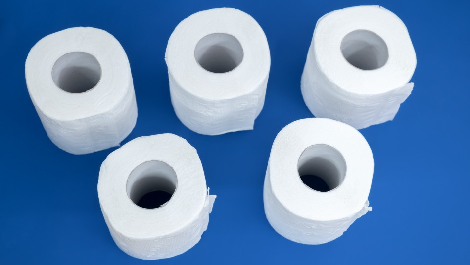 ¿Dónde se tira el papel higiénico: Al cesto de la basura o al inodoro?