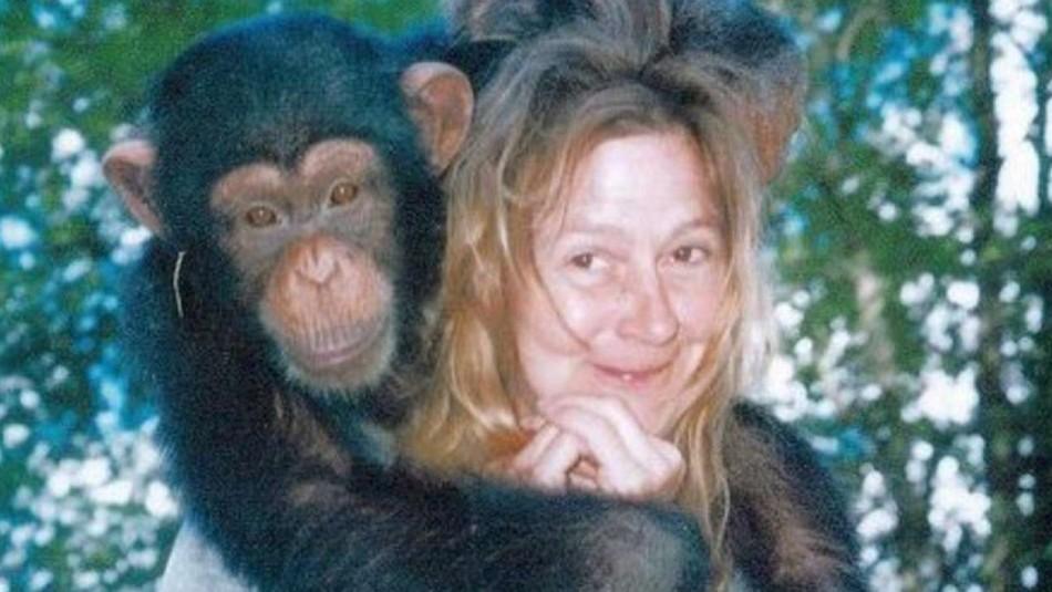 Brutal ataque de chimpancé.