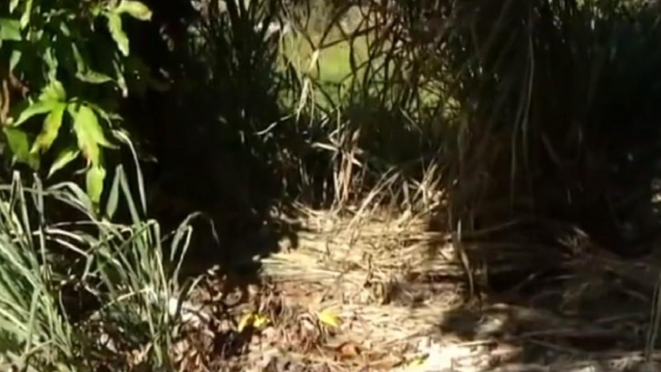 Tortura a su hija de seis años durante tres días y la arroja a un hoyo: la niña está grave